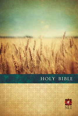 Holy Bible NLT Premium Value Slimline Large Print (Rústica) [Biblias]